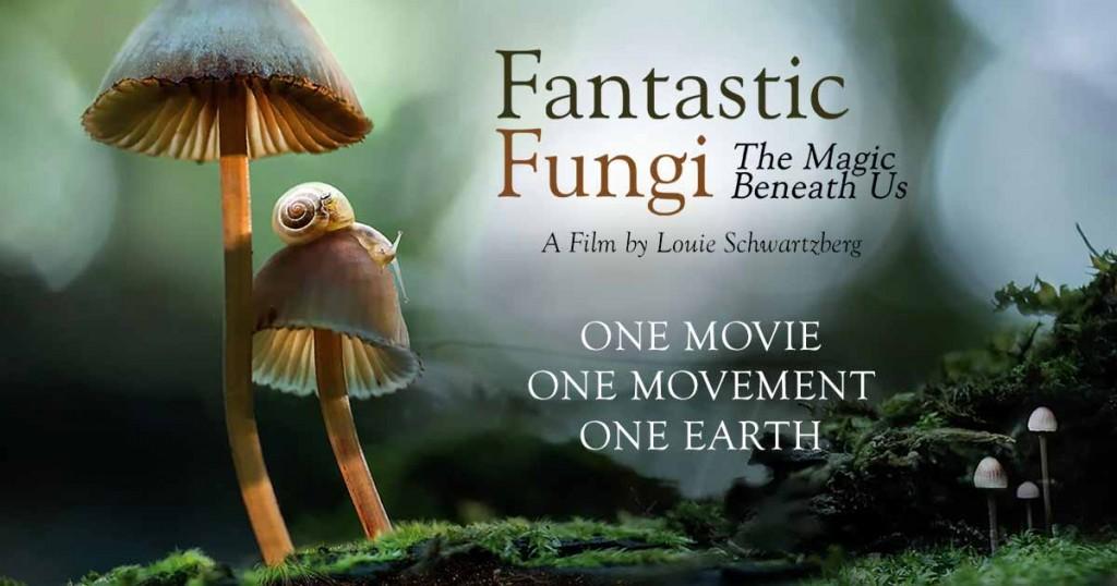 تصویر Fantastic Fungi 2019