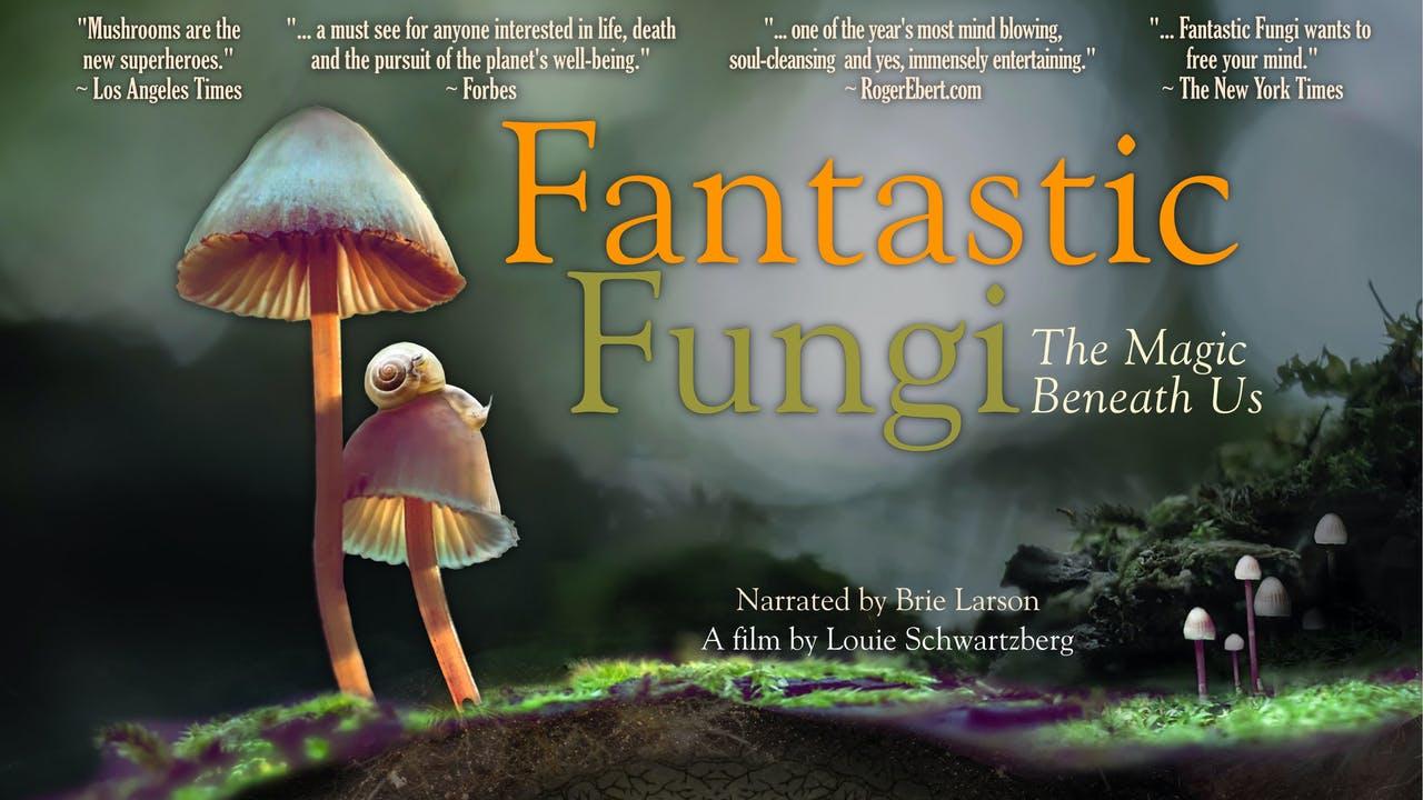 تصویر فیلم Fantastic Fungi