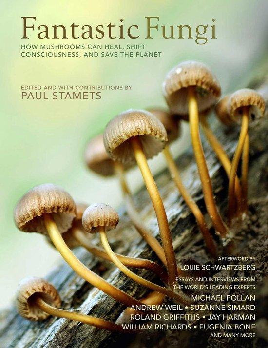 Fantastic Fungi 2019
