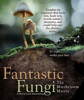 Fantastic Fungi Cover