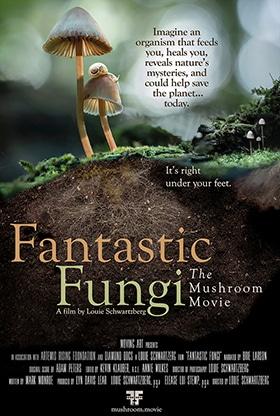 تصویر کاور Fantastic Fungi